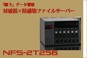nfs-2t256